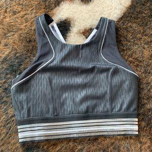 IVY Park brand new sports bra